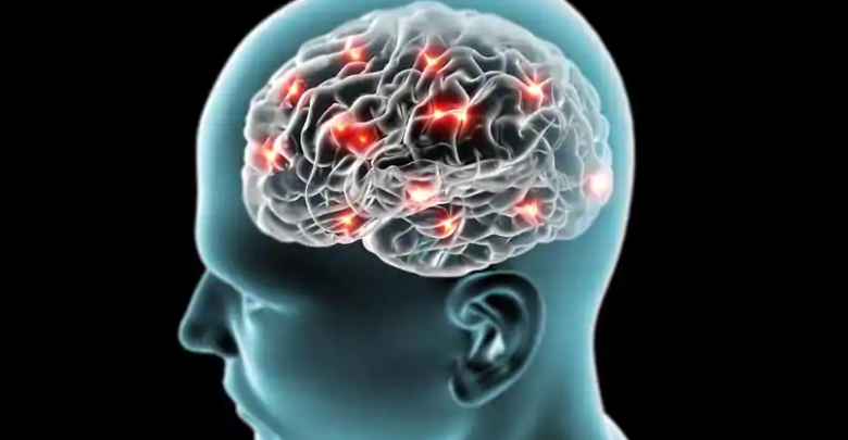 Researchers Use Memristor System to Mimic Human Brain in Efficient Learning